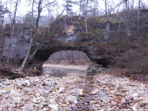 Gallery.Clifty Creek CA.2011-11-20.011