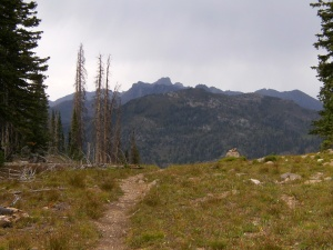 Gallery.Mt Zirkel Wilderness.2013-08-19.032