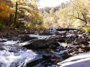 Gallery.Richland Creek.2012-10.17