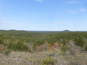 Looking north-west from Coy Bald trail, with Lower Pilot Knob on the right.