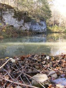 Beaver Dam below Van Dyke Spring