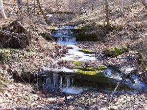 Smith's Creek.2013-02-06.20
