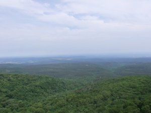 Looking north over the Arkansas River valley to the Boston Mountains from Cameron Bluff.