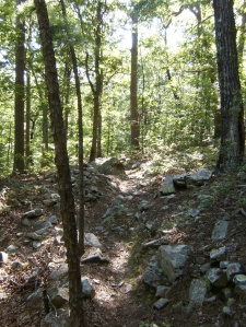 It's not a proper hike in the Ouachitas unless there's a large rock garden to navigate.