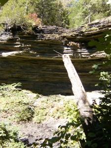 Poteau Mountain Wilderness.2013-10-09.014
