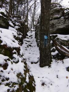 Lake Wedington Trail.2014-02-09.008