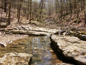 Buffalo River.Beech Creek to Kyles.2014-04-18.008