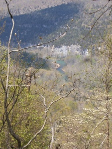 Buffalo River.Beech Creek to Kyles.2014-04-18.014
