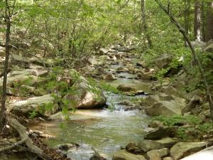 Billy Creek Loop.2014-04-30.008