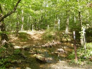 Buckeye & Caney Creek East.2014-05-02.002