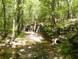 Buckeye & Caney Creek East.2014-05-02.007
