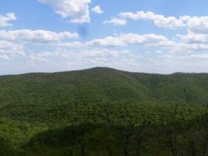 Buckeye & Caney Creek East.2014-05-02.043