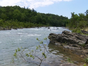 Cossatot River Corridor Trail.2014-05-17.022