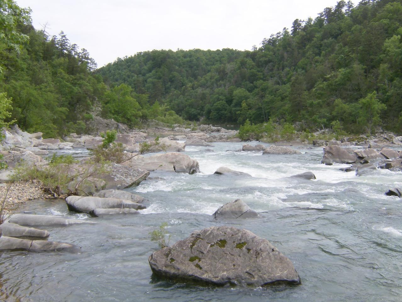 The Ozark Mountain Daredevils - It's Alive