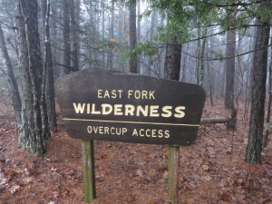 East Fork Wilderness.2015-01-03.001
