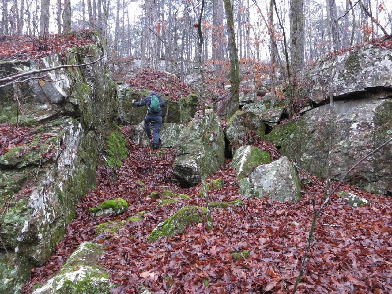 East Fork Wilderness The Compulsive Hiker