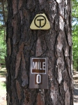 Ouachita Trail.Deadman Gap to Talimena SP.2015-04-25.002